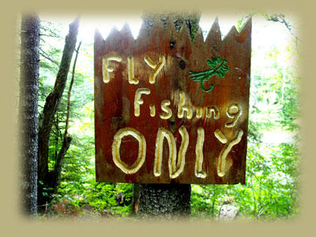 Sign: Fly Fishing Only